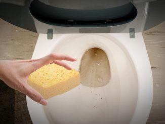 Rättspsyk i Sundsvall inför tvättsvamp istället för toaborste