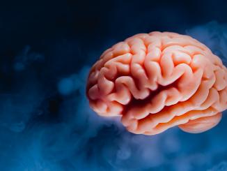 Gå inte på myten om kemisk obalans i hjärnan